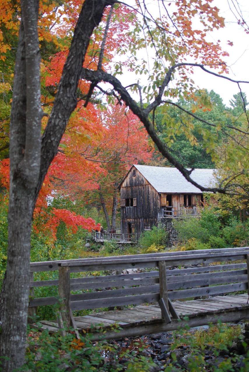 Sawmill in Autumn